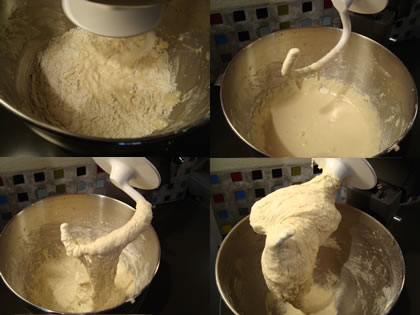 Easy Pizza Dough Recipe