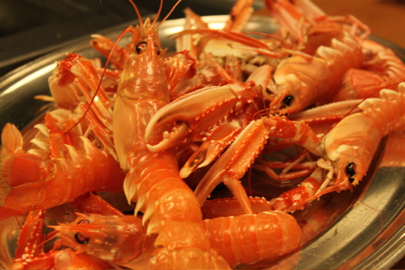 Langoustine in Paul Bartolotta's Kitchen