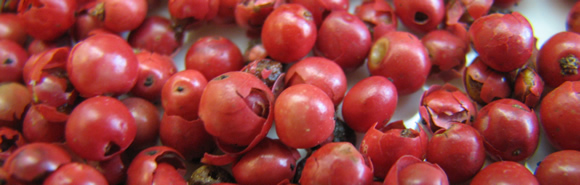 Kim Canteenwalla loves pink peppercorns!