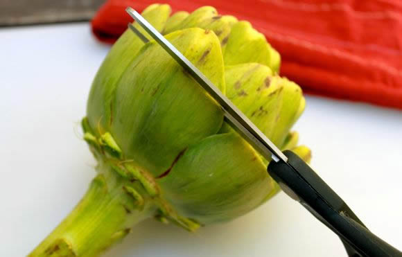 Artichoke Dipping Sauce Recipe
