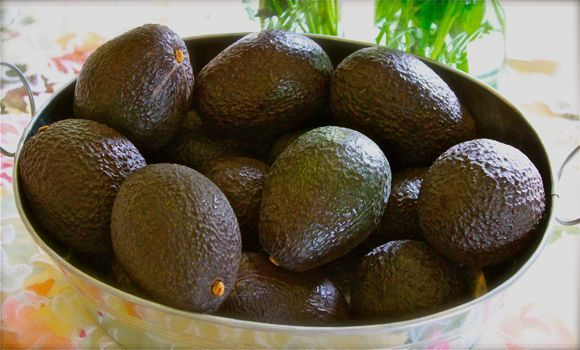 Perfect Avocados for Guacamole Recipe