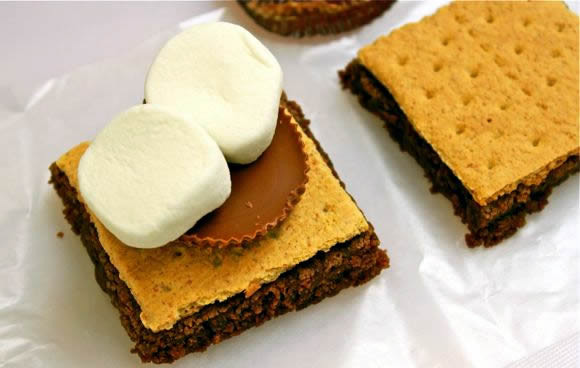 S'morkies Recipe Recipe